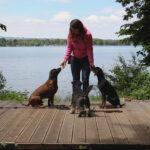 Hundeschule Sasha – Lektion 1: An- & Ableinen